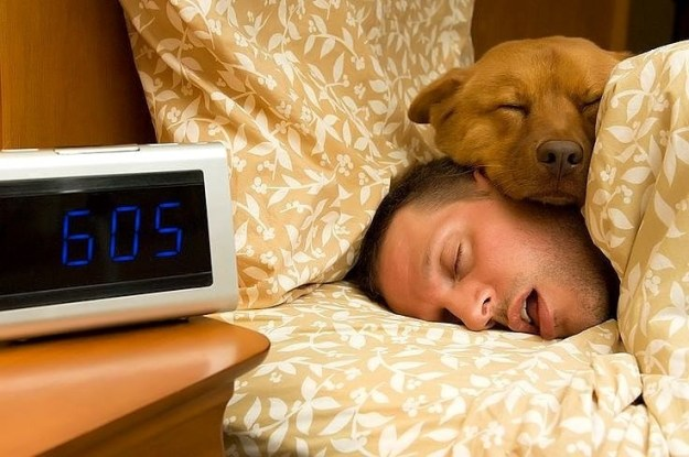 Their sleep schedules will mostly depend on you.