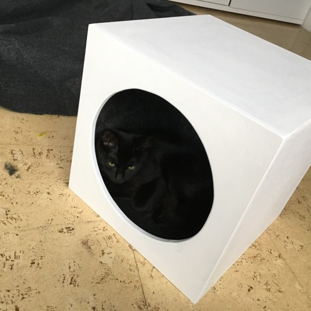 This cat cavern fits inside both the Expedit and Kallax shelving compartments.