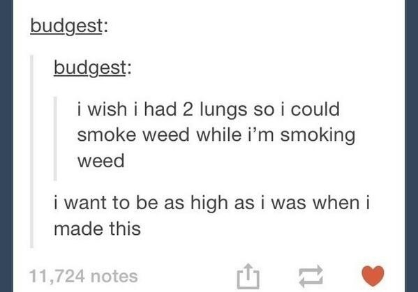 You know you're high when you start having thoughts like this: