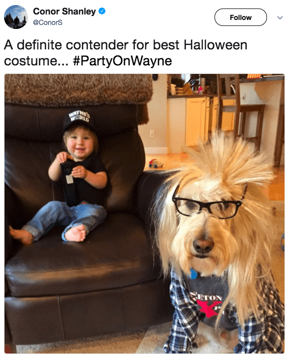 Woof and Garth (or, rather, Wayne and Barkth):