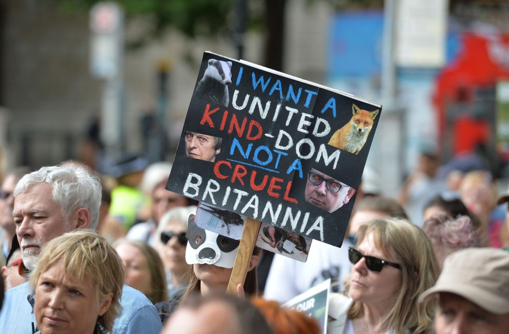 Anti-hunting protesters in London in August this year.