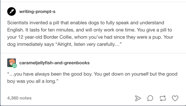 The story of the good boy.