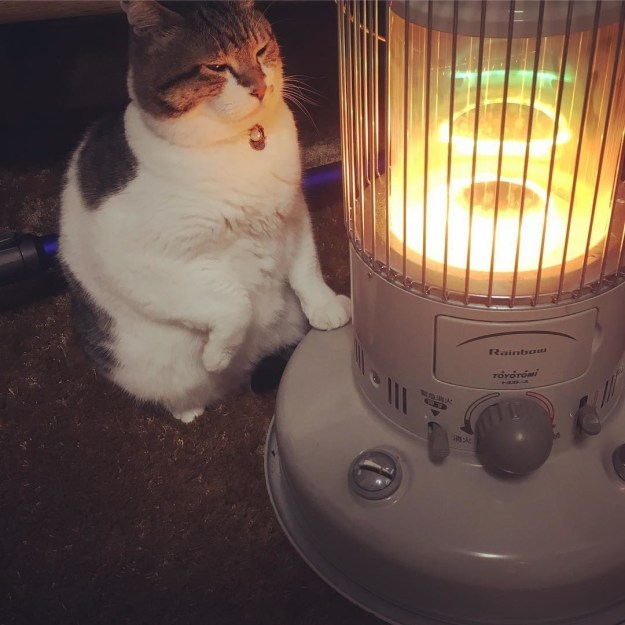 He personally enjoys staring into the electric coils of his heater...