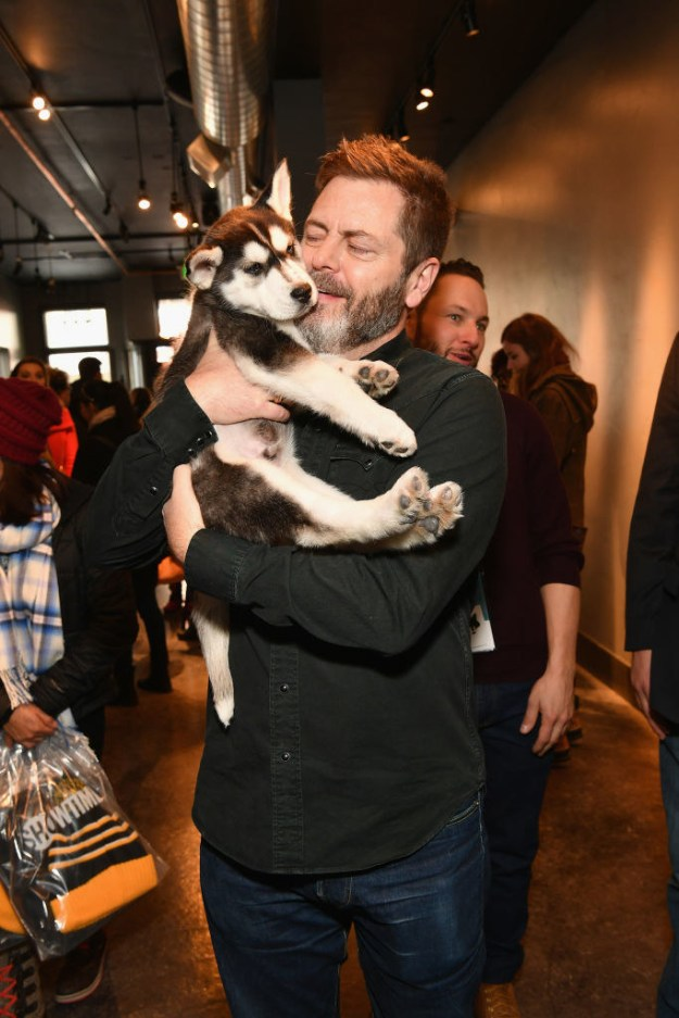 And so Nick Offerman has been walking around Park City, Utah, cradling smol orphan White Fang in his manly arms.