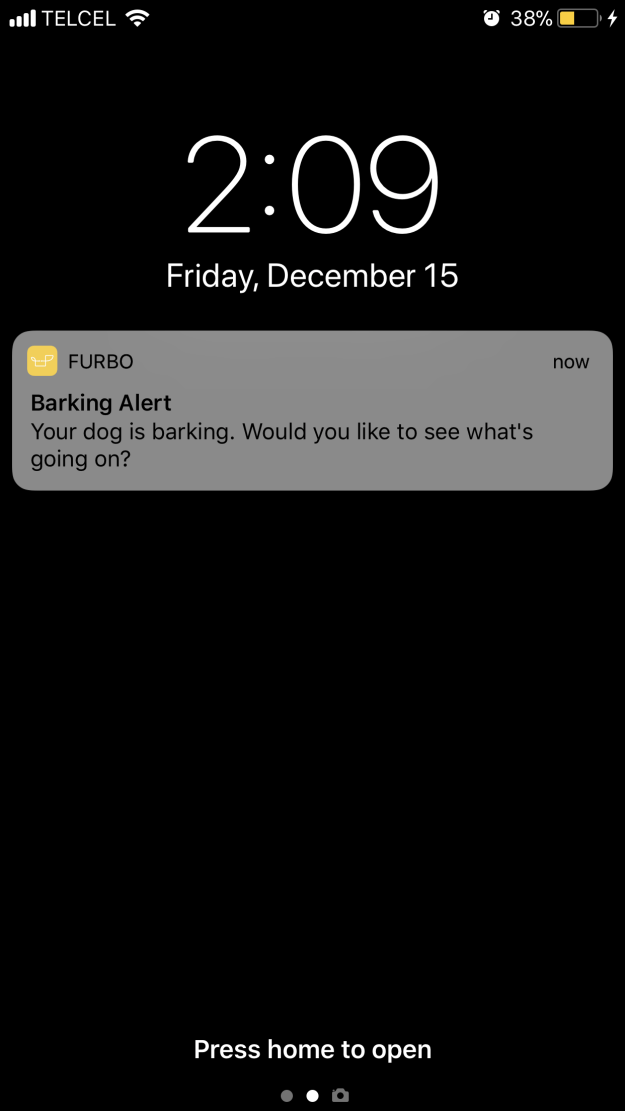 That weekend, I decided to put the dog camera to another test by going out partying for the first time since we moved. It all seemed to go swimmingly, until I got this notification at 2 a.m.