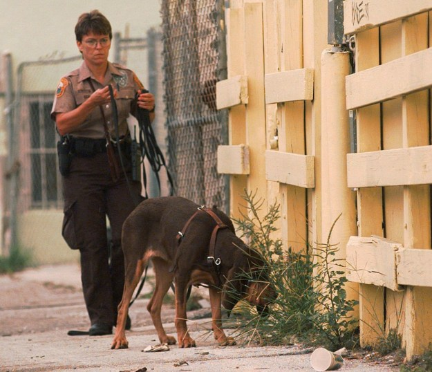 A suspicious vehicle was found in a Miami parking garage, which could yield clues to the killer's identity. A Miami Beach canine unit searched the alleyway nearby.