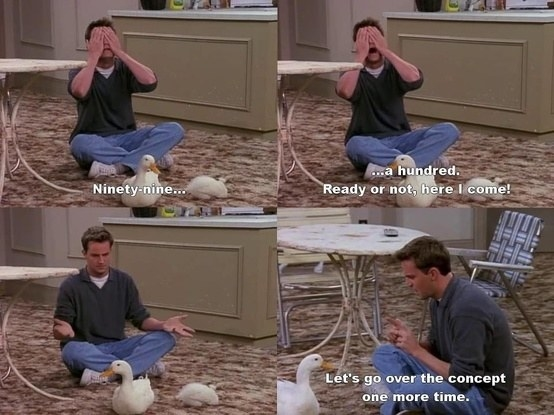The fact that Chandler and Joey were able to keep the Chick and the Duck in their apartment.