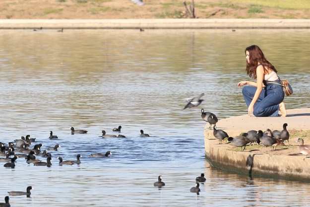 Selena Gomez was spotted final Friday looking rather seducktive at a local Los Angeles pond.