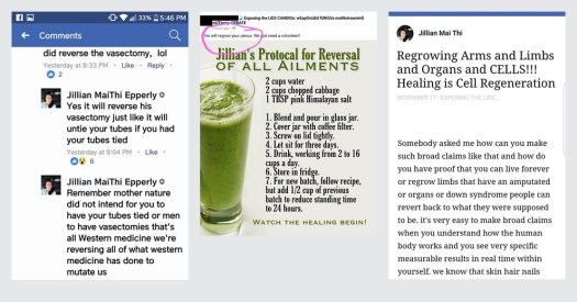Screenshots from Epperly's Facebook group, as collected by her critics.