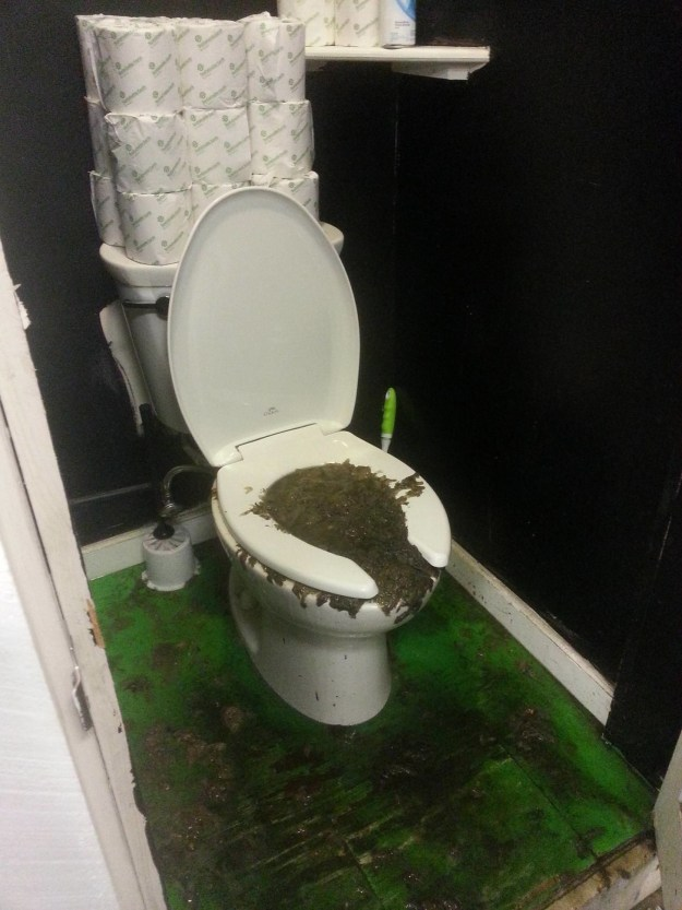 This severely clogged up toilet.