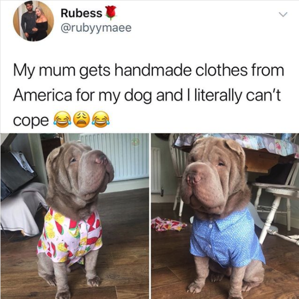 They have the best taste in fashion:
