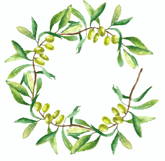 For those of you who don't know, the olive branch is a symbol of peace AKA it seems Katy wants to put her feud with Taylor aside once and for all.