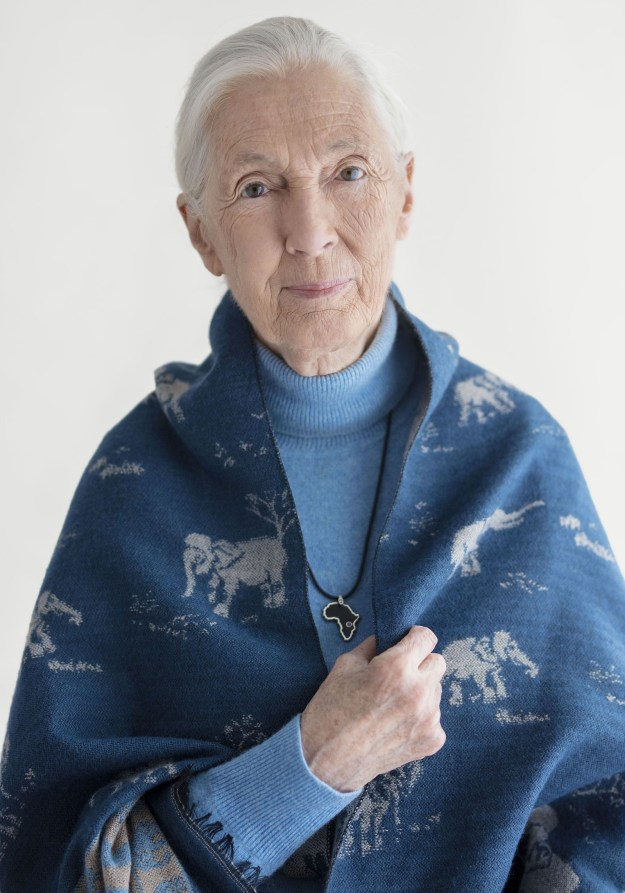 Jane Goodall — primatologist, conservationist, author, and environmental activist
