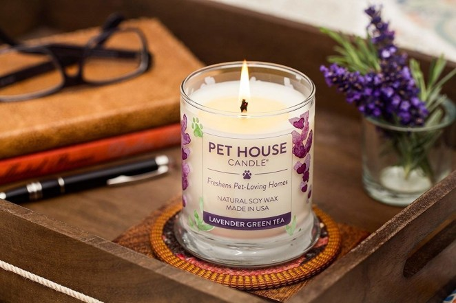 """The soy wax and 100% cotton wick are extremely clean-burning; each candle burns for about 60 hours. Promising review: """"I have multiple dogs in the house and am always concerned that it smells like that to visitors even cleaning everyday. I have used other candles add a pleasant smell to the underlying odor, but these do better. I can leave the house and when I first open the door on my return, I don't smell dog. We recently had a house full of people (many of them pet parents) over for dinner and someone actually commented: 'Your house smells really nice. How do you keep the dog smell out?' I laughed and told them I was just wondering if the candles were working. I guess I got the BEST answer."""" —LLL TexasGet it on Amazon for $21.95 (23 scents). Need more convincing? We know these actually work, because we've tried them! You can read one editor's full Pet House Candle review for more."""