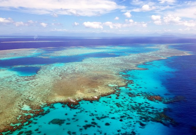 Australia's Great Barrier Reef, the world's largest living structure, is dying amid rising sea temperatures.