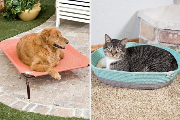 26 surprisingly inexpensive pet