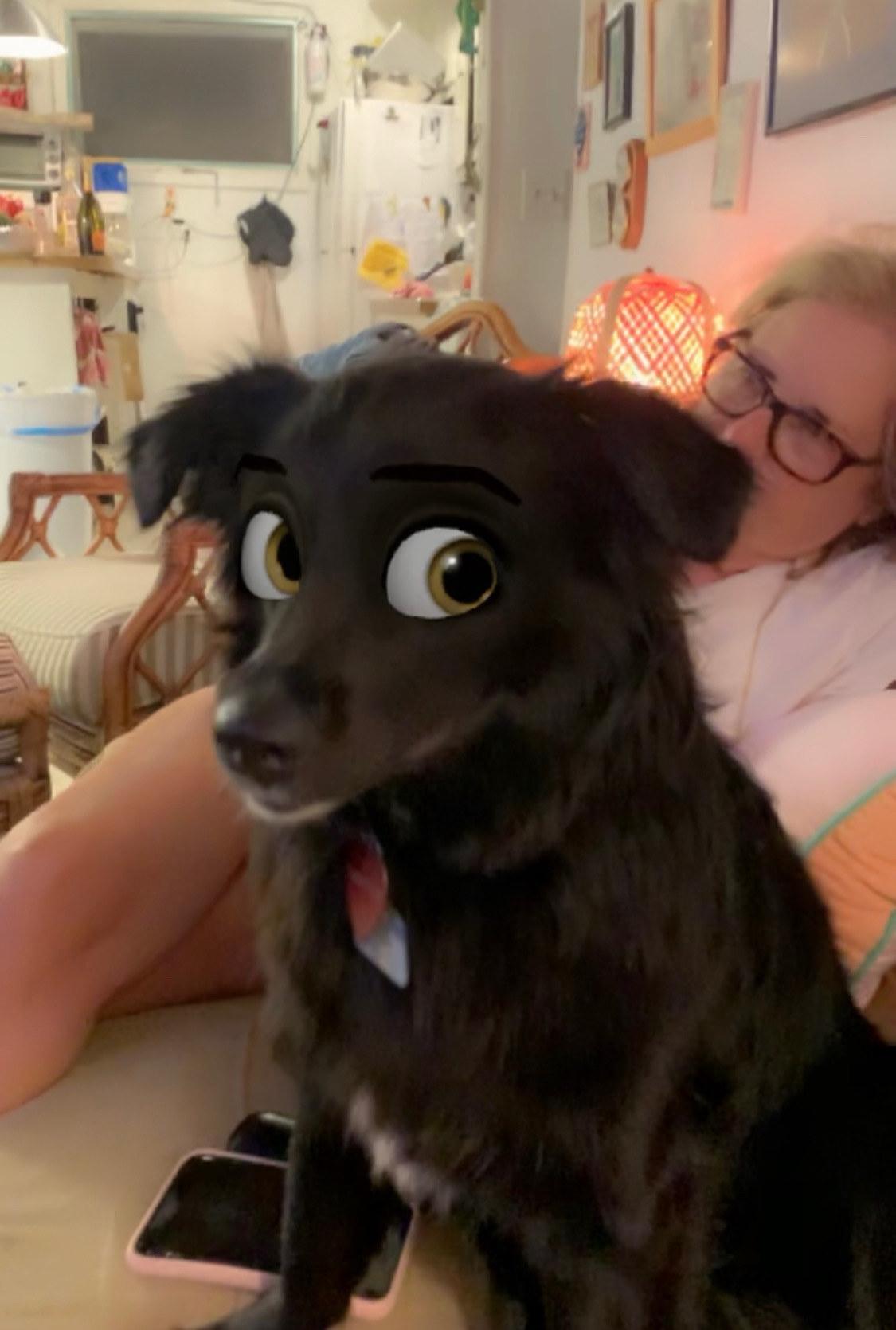 Cartoon Dog Eyes : cartoon, Snapchat, Filter, Makes, Disney, Cartoon