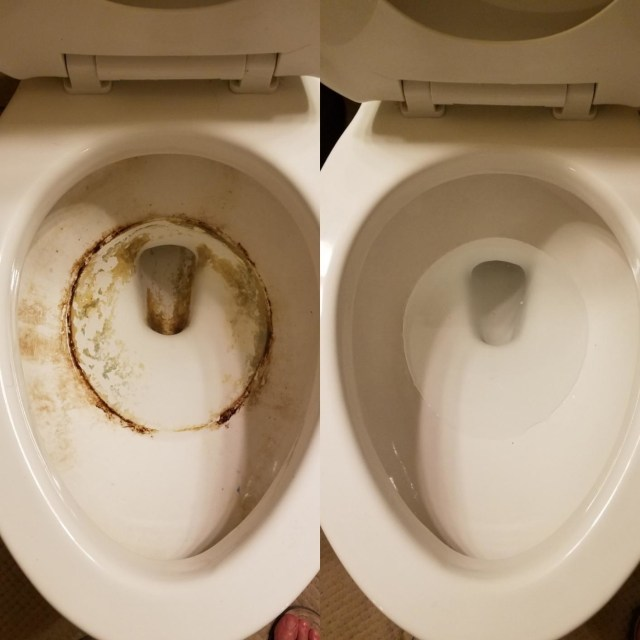 30 Things That Actually Make Cleaning Toilets Incredibly Easy