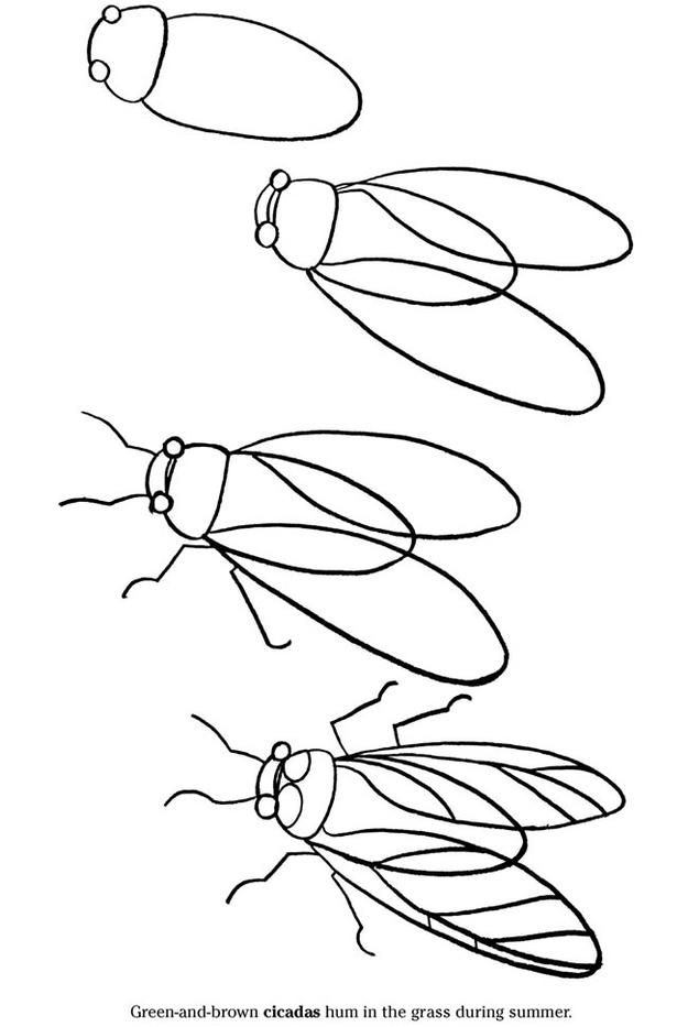 26 Ways To Embrace The Oncoming Cicada Invasion