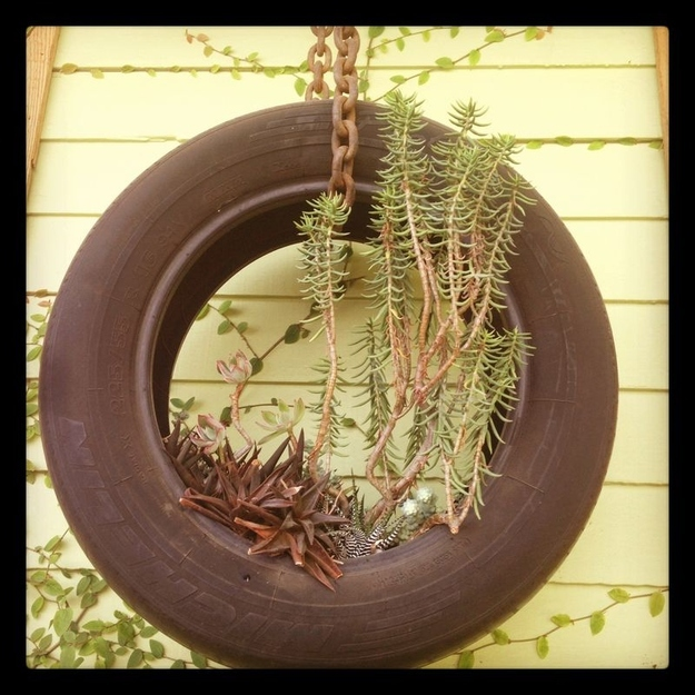 Tire Swing Succulent Planter