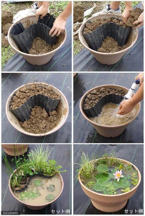 DIY Water Garden
