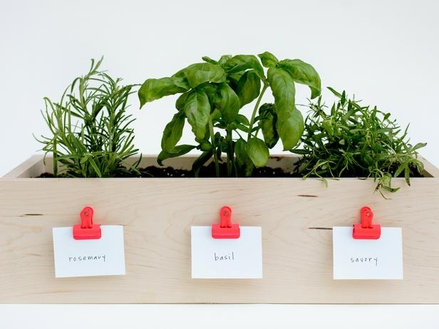 Kitchen Herb Planter