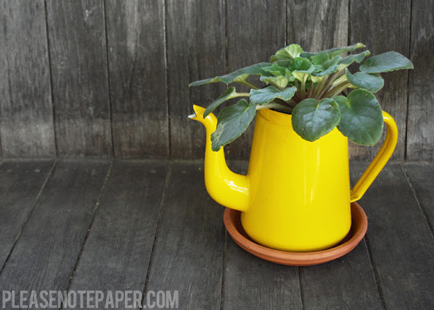 Pitcher Planter