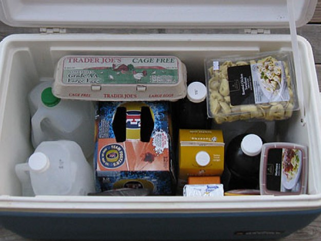 Freeze gallon jugs of water and place them in your cooler.