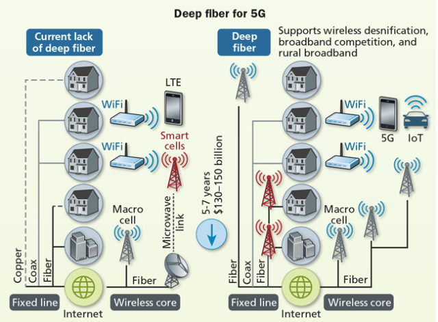 the role of fiber