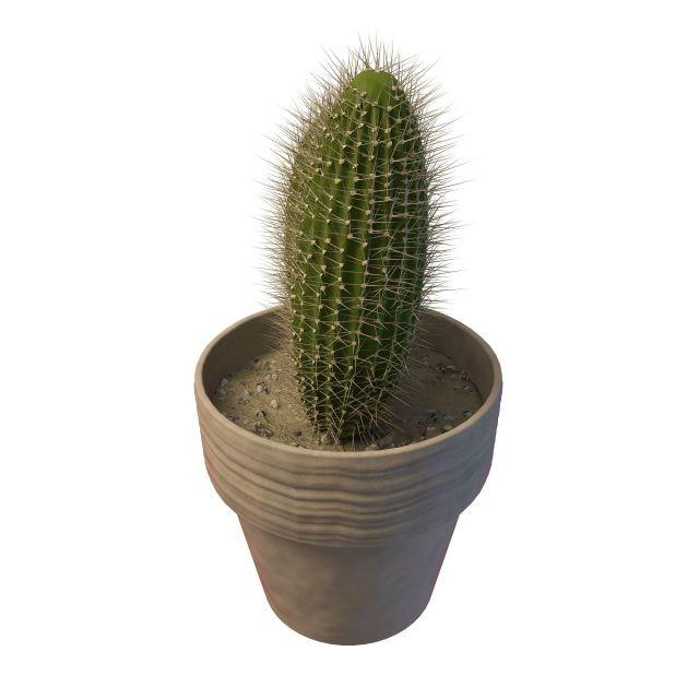 Potted Saguaro Cactus 3d Model 3ds Max Files Free Download Modeling 30089 On CadNav