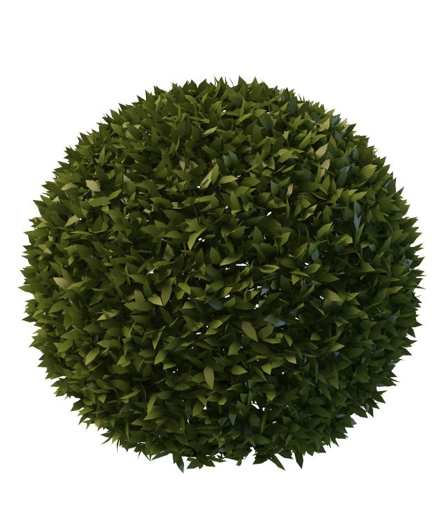 Topiary Ball 3d Model 3ds Max Files Free Download Modeling 30363 On CadNav