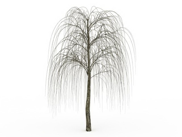 Bare willow tree 3d model 3ds max files free download