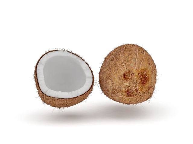 Cut Open Coconut 3d Model 3ds Max Files Free Download
