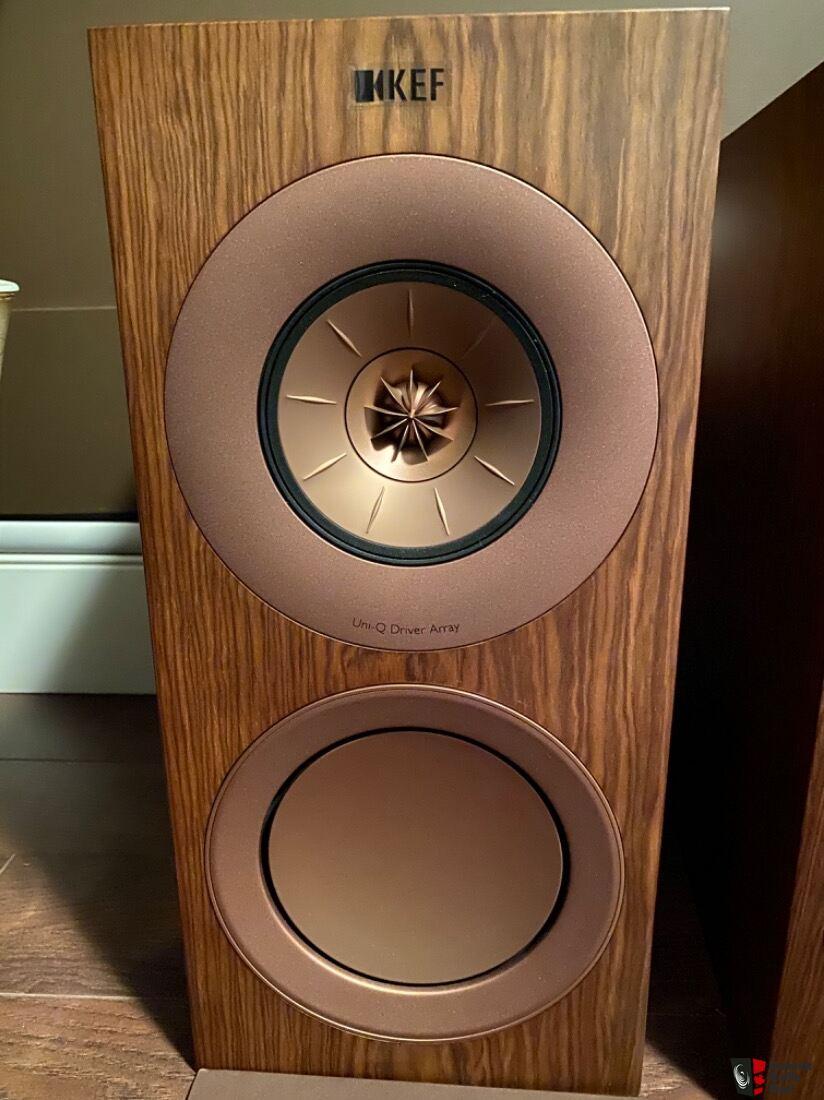 KEF R3 Walnut Photo #2534702 - Aussie Audio Mart