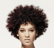 afro hairstyles - haircuts hairdos