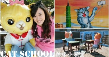 雲林虎尾景點 『貓咪小學堂』貓咪立體彩繪。跟著萌貓一起上學