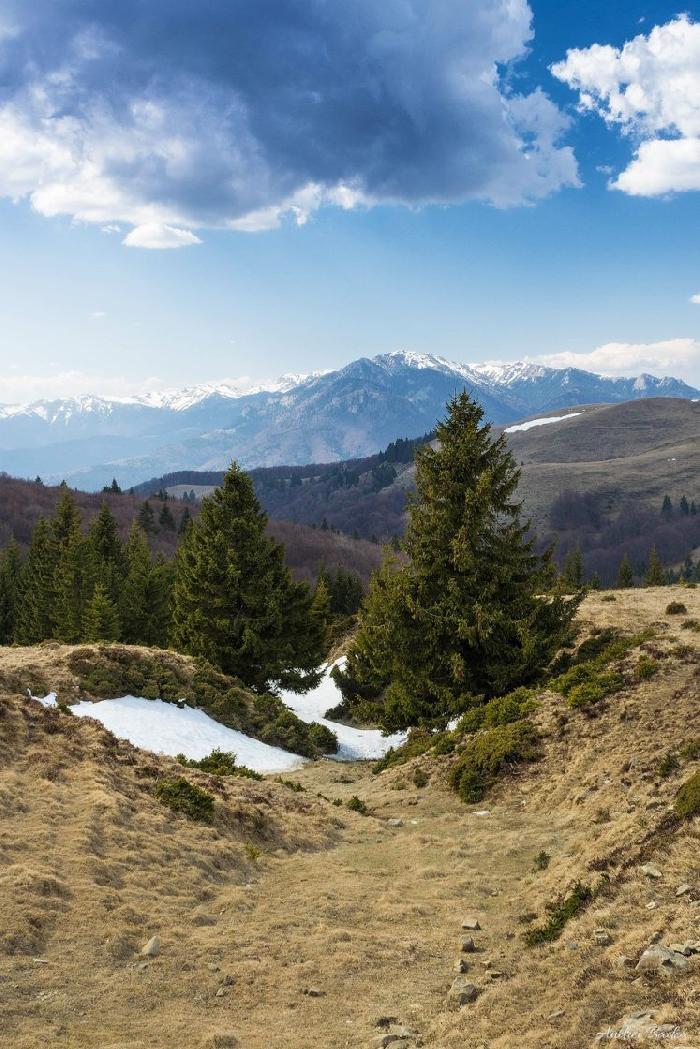 /Tataru/image021.jpg