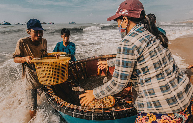 Bustling fishing port in Ba Ria-Vung Tau, social news, vietnamnet bridge, english news, Vietnam news, news Vietnam, vietnamnet news, Vietnam net news, Vietnam latest news, vn news, Vietnam breaking news