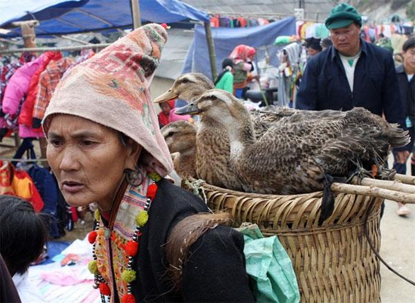 Lai Chau, Dao San Market, typical Mong dish, thang co, Vietnam economy, Vietnamnet bridge, English news about Vietnam, Vietnam news, news about Vietnam, English news, Vietnamnet news, latest news on Vietnam, Vietnam