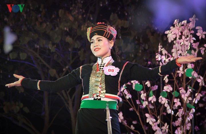 Ethnic costumes performed at Bauhinia Festival , entertainment events, entertainment news, entertainment activities, what's on, Vietnam culture, Vietnam tradition, vn news, Vietnam beauty, news Vietnam, Vietnam news, Vietnam net news, vietnamnet news, vie