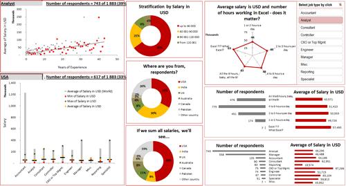Dashboard to visualize Excel Salaries - by Ekaterina Batranets - Chandoo.org - Screenshot