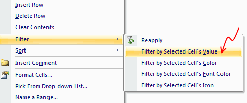 Filter by Selected Cells Value - Excel Tip