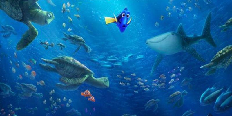 【影評】《海底總動員2》等待13年的「半年之後」