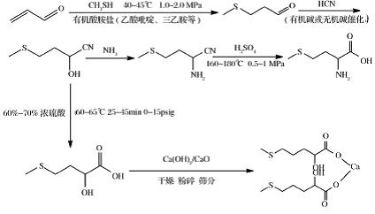 蛋氨酸的作用和功效是什么