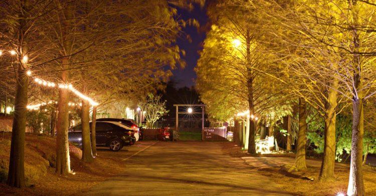 MITAKA 3e CAFE龍貓夜景咖啡,夜裡的黃金森林好迷人,浪漫夕陽與美麗夜景盡收眼底