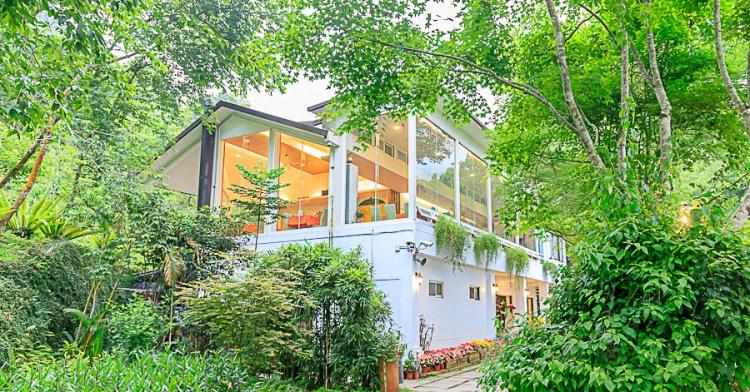 桃李河畔,台中老字號景觀餐廳推薦,隱身山區的美麗桃花源,還有火鍋、排餐與下午茶可以享用!