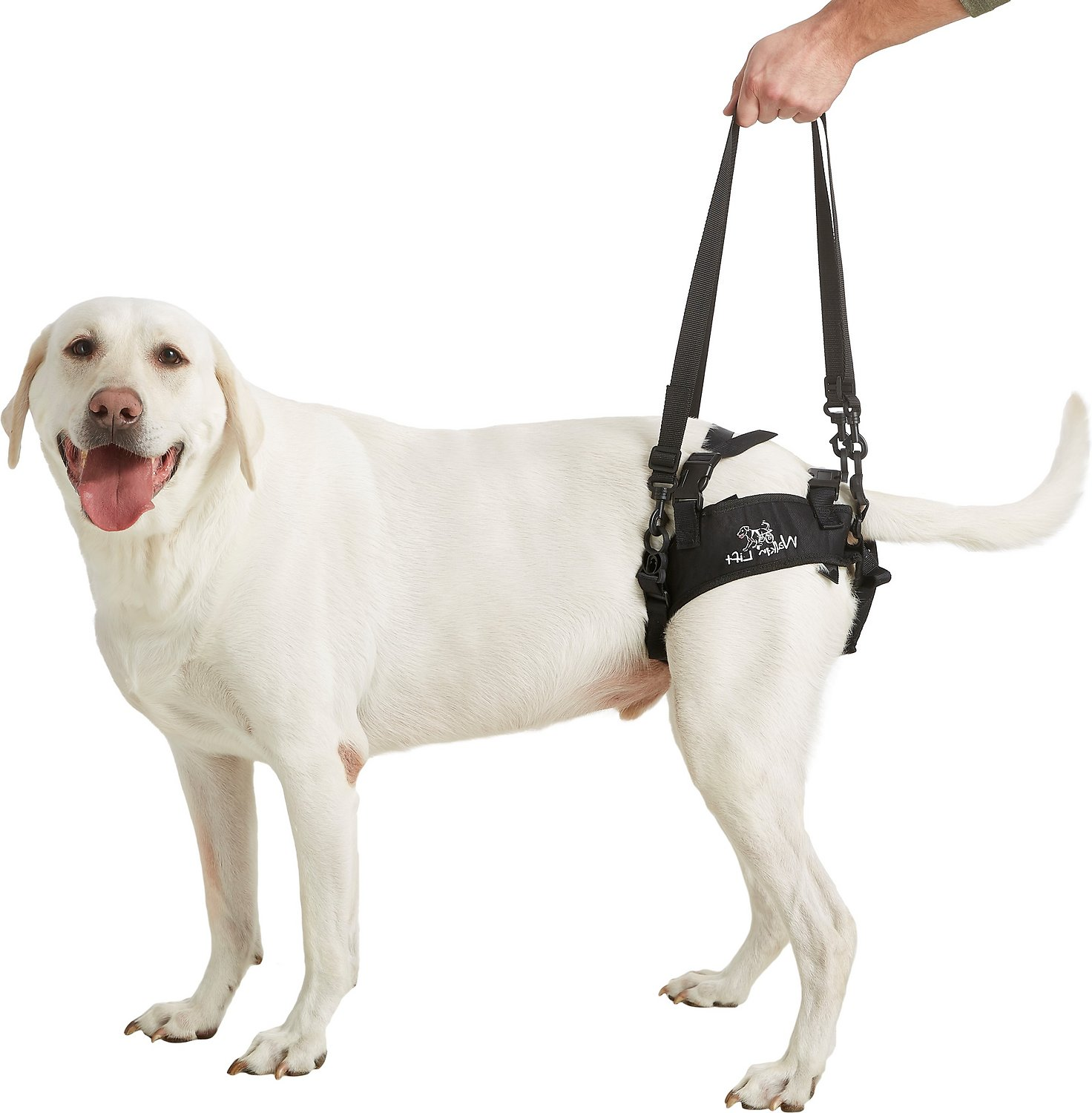 Handicappedpets Rear Lift Dog Harness Large