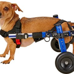Wheelchair Dog Electric Reclining Chairs Nz Handicappedpets Small Blue 11 17 Lbs 3 6 Leg