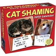 Andrews McMeel Cat Shaming 2018 Day to Day Calendar