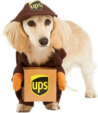 California Costumes UPS Delivery Driver Dog Costume, X ...